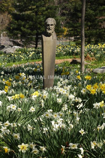 Garden - Rhode Island