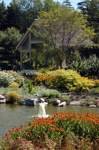 Garden - Maine