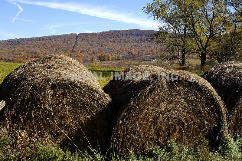 Pennsylvania - Hop Bottom