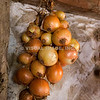 Onions hang on the wall of a Pilgrim home -- (released through Plimoth Plantation), Plymouth, MA.  (c) Tom Croke/Visual Image, Inc.