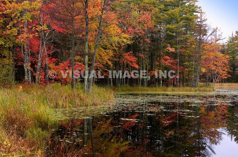 New Hampshire - Concord