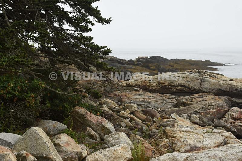 Maine - Ocean Point