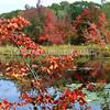 Massachusetts - Rutland