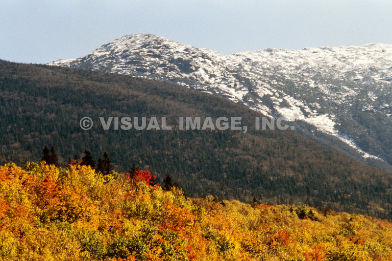 Fall Foliage on Mountainside, Rutland, VT. <br /> (c)Anna M. Croke/Visual Image, Inc.