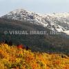 Vermont - Rutland