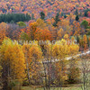 New Hampshire
