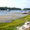 Maine - Cozy Harbor