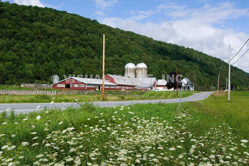 Vermont - Rochester