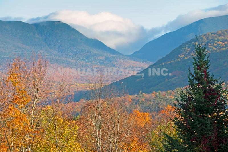 New Hampshire - Jackson