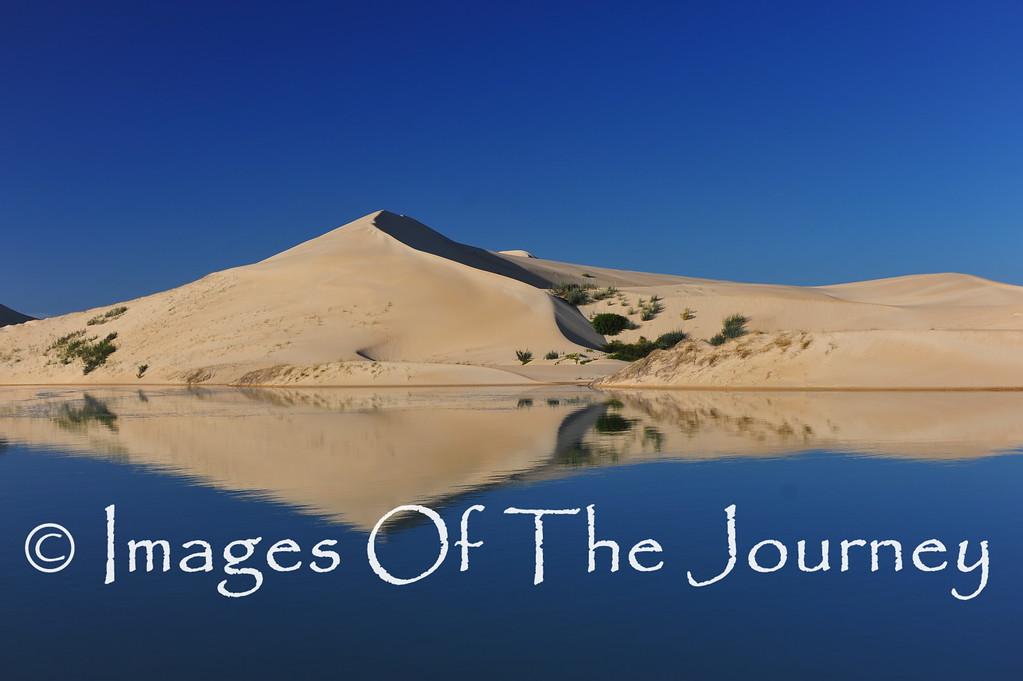 Salt Water River Dunes at Dawn
