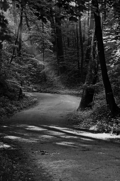 The Road Less Travelled - located in Spring Grove Cemetery
