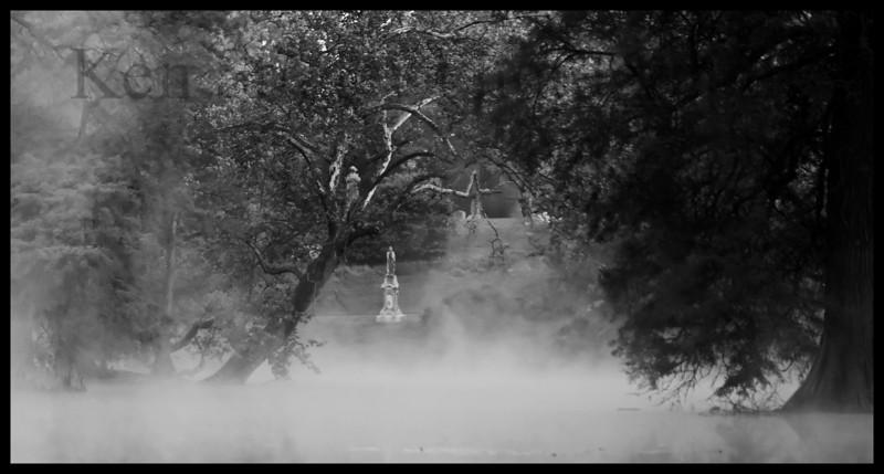 Foggy cemetery morning - Spring Grove cemetery, Cincinnati, Ohio