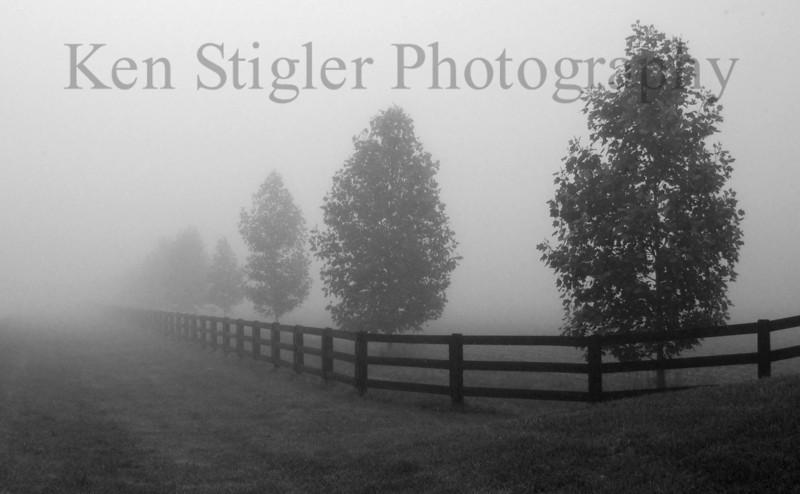 Foggy morning in Warsaw, Kentucky