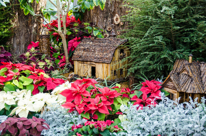 Christmas display at the Krohn Conservatory