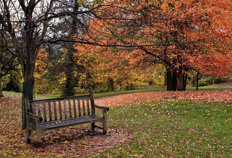 Alms Park, Cincinnati, Ohio