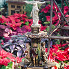 Genius of Water at the Krohn Conservatory Holiday display