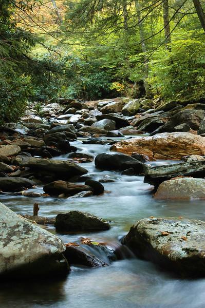 Mountain Stream, Gatlinburg, Tennessee