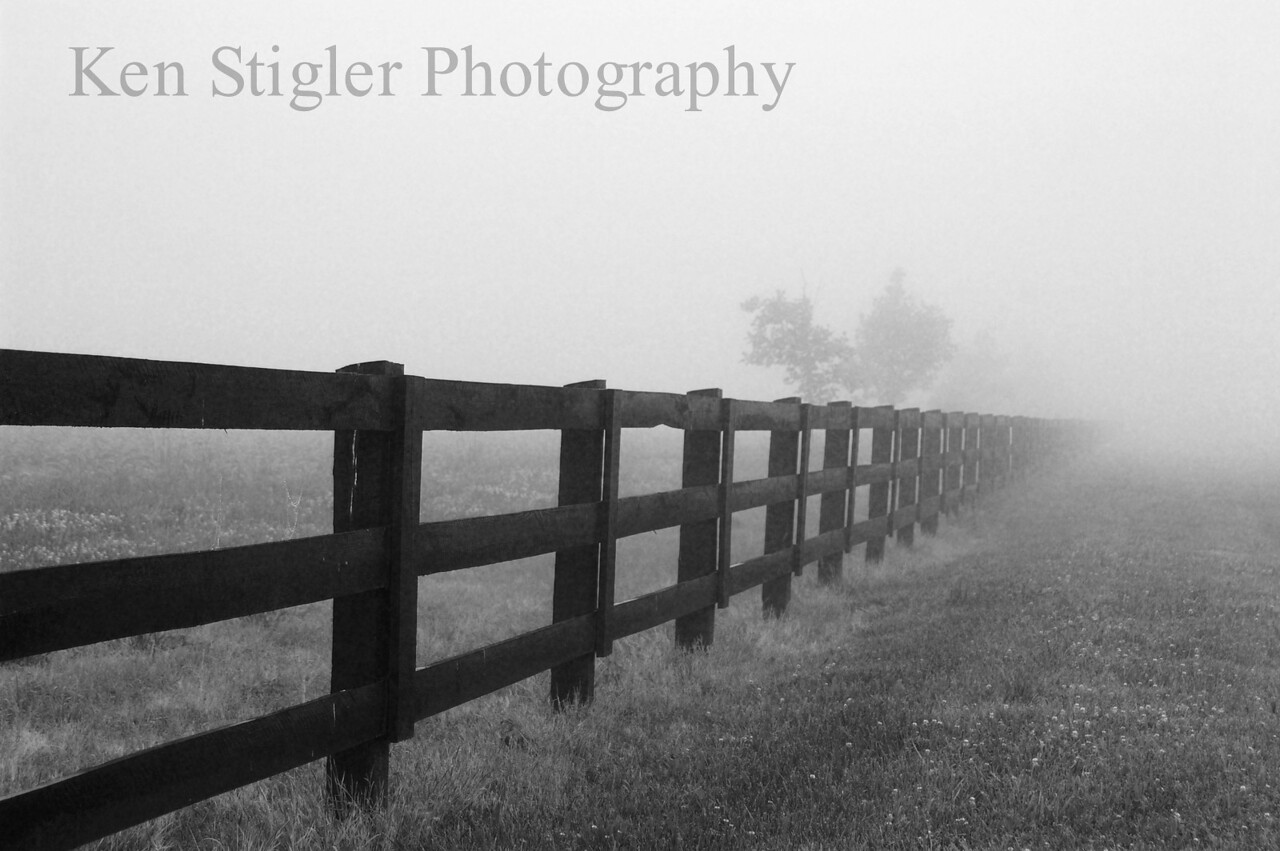 A foggy morning in Warsaw, Kentucky