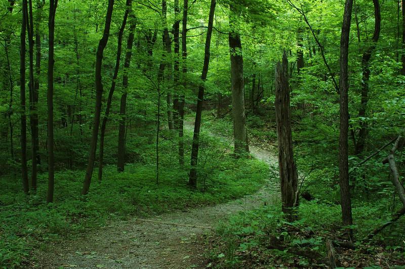 Miami Whitewater Forest, Harrison, Ohio