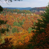 Autumn at Red River Gorge