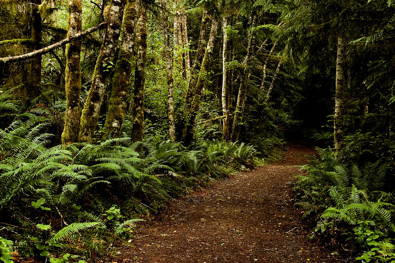 East Sooke Park in British Columbia