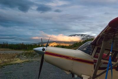 A Maule in Alaska