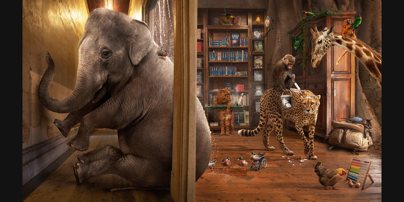Elephant in the Room and other Puns