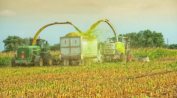 harvest-292-Edit