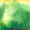 Green Fire 1