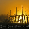 Rising Vineyard Image I.D. #:  V-08-005