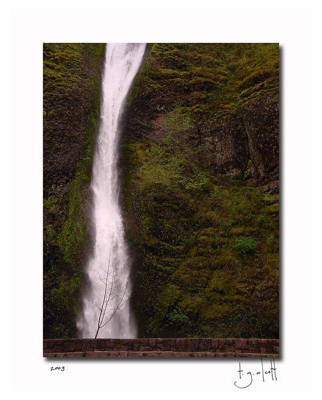 Oregon Waterfall I