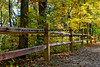 Mohican State Park, Perrysville - October, 2010