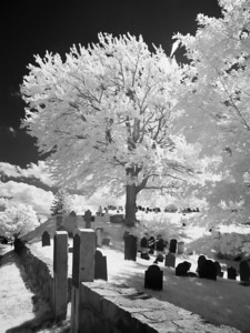 Infrared Photo of Cemetery, Newburyport MA