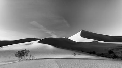 Flowing Dunes
