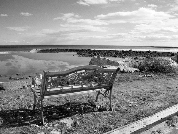 Bench Overlooking the Ocean, Rye Beach, NH