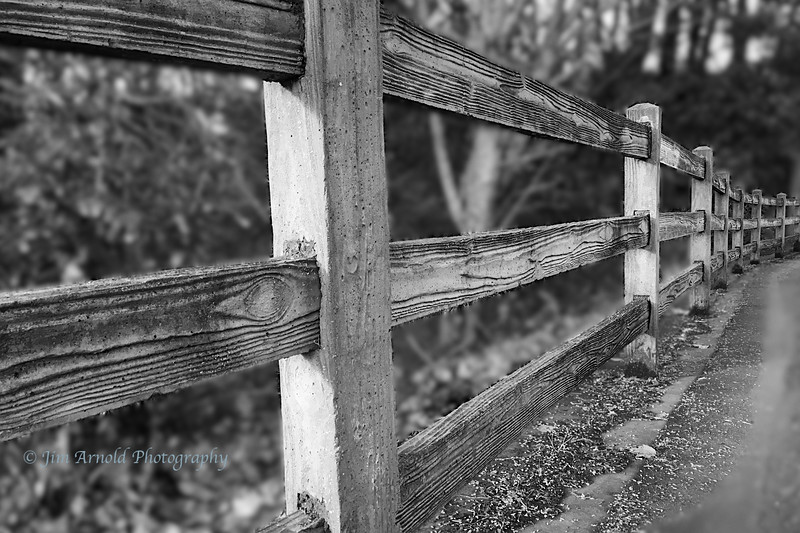 Fence at Alton Baker Park (Plus-X Pro version)
