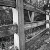 Fence at Alton Baker Park (Plus-X Pro version)