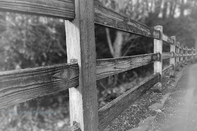 Fence at Alton Baker Park (Victorian Portrait version)
