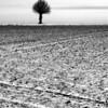 Fotograf på Österlen i Skåne - bilder i svartvitt som passar till fotokonst