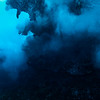 Blue light / Luz Azul