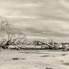 Hunting Island State Park Boneyard Beach Panorama, sepia