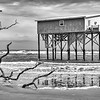 Last cabin standing at Hunting Island State Park (B&W)