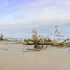 Hunting Island Boneyard Beach high resolution Panorama