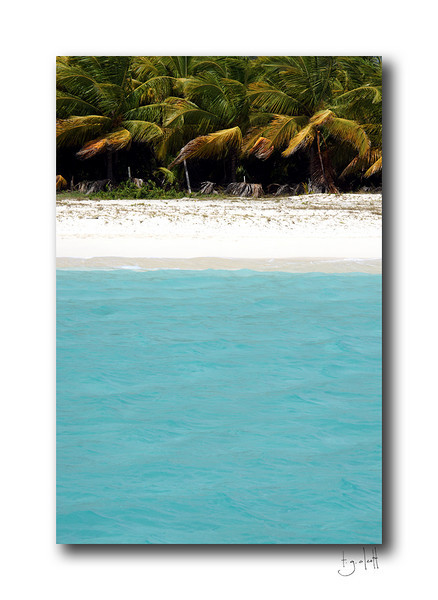 Palm Grove, Anguilla
