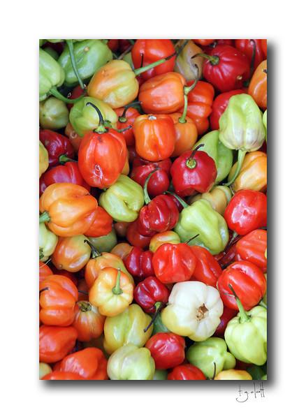 Peppers, Marigot Market, Saint Martin