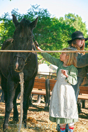 Carroll County Living History & Reenactment-2013