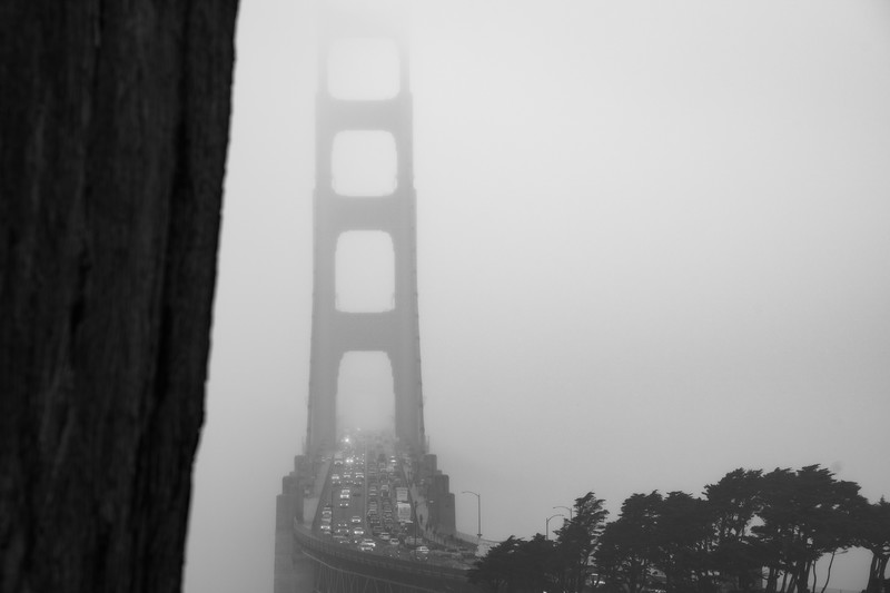 Golden Gate BW