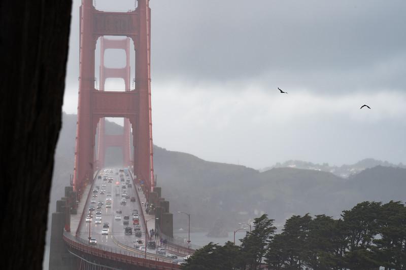 Golden Gate Moody