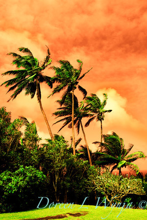 Maui Skies_110B