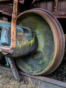 Moss & Rust